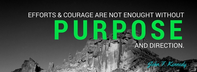 efforts and courage are not enough without purpose and direction